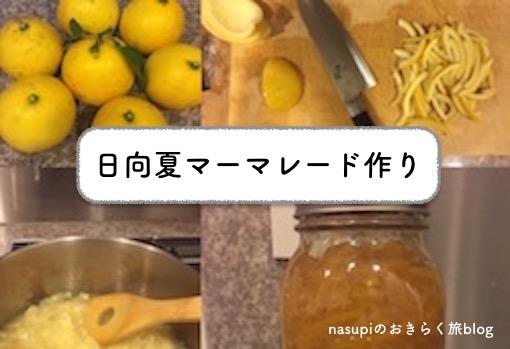 ホームメイド!宮崎産日向夏みかんでマーマレードを手作り