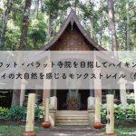 ワット・パラット寺院を目指してハイキング〜チェンマイの大自然を感じるモンクストレイル(僧侶の道)