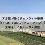 アカ族が働くチェンライの茶畑【CHOUI FONG(チュイフォン)】見晴らしの良いカフェ併設