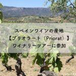 スペインワインの産地【プリオラート(Priorat)】ワイナリーツアーに参加