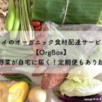 タイのオーガニック食材配達サービス【OrgBox】新鮮野菜が自宅に届く!定期便もあり超便利