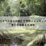 "<span class=""title"">【カオヤイ国立公園】で爽快トレッキング!豊かな自然を大満喫</span>"