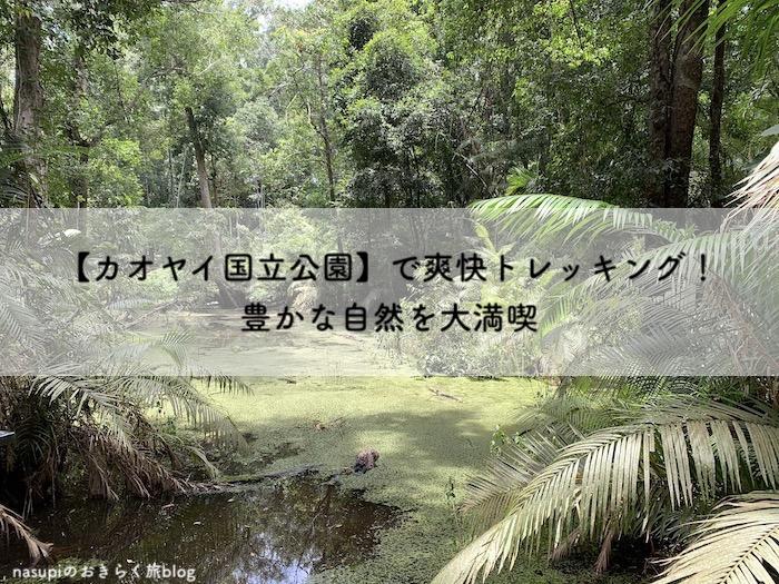 【カオヤイ国立公園】で爽快トレッキング!豊かな自然を大満喫