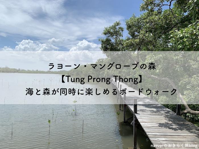 ラヨーン・マングローブの森【Tung Prong Thong】海と森が同時に楽しめるボードウォーク